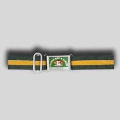 AWS BELT _Green