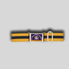AWS BELT REG_Yellow