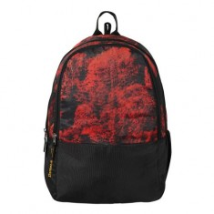 Dussle Dorf Polyester 25 Liters Laptop Backpack (Red and Black)