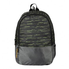 Dussle Dorf Polyester 25 Liters Laptop Backpack (Green and Grey)