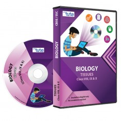 Letstute Biology Chapter: Tissues For Class VIII, IX & X (DVD)