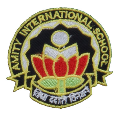 Amity International School, Sec-44, Noida